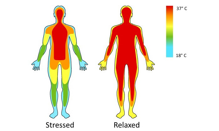 Temperature and stress